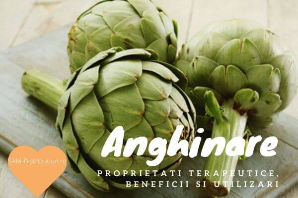 Anghinare: beneficii, proprietati terapeutice si utilizari