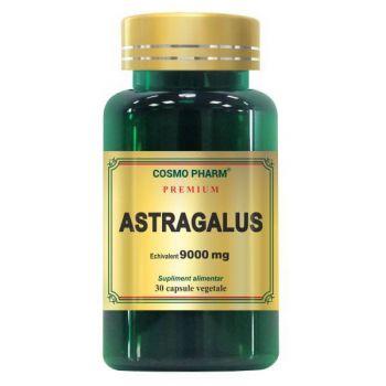 Premium Astragalus Extract 9000mg, 30 capsule, Cosmopharm