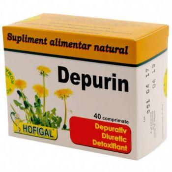 Depurin, 40 comprimate, Hofigal