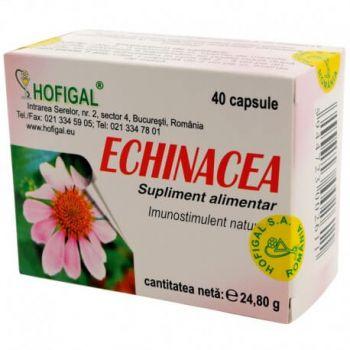 Echinaceea, 40 capsule, Hofigal