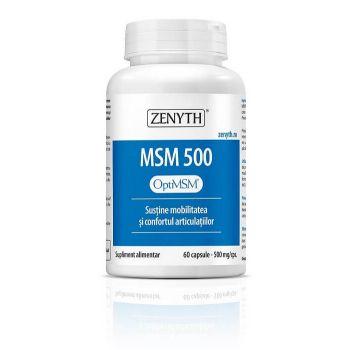 MSM 500, 60 cps, Zenyth