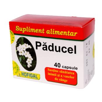 Paducel, 40 capsule, Hofigal