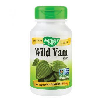 Wild Yam Root, 100 capsule, Secom