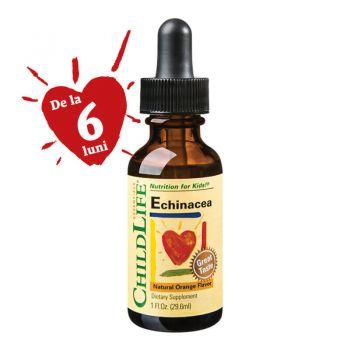 Echinaceea sirop pentru copii, 29.6 ml, Secom (Childlife Essentials)