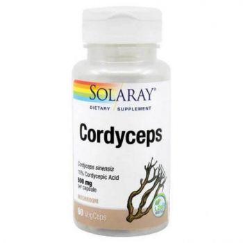 Cordyceps Secom - 60 capsule