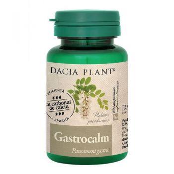 Gastrocalm, 60 comprimate, Dacia Plant