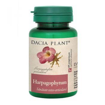 Harpagophytum, 60 comprimate, Dacia Plant