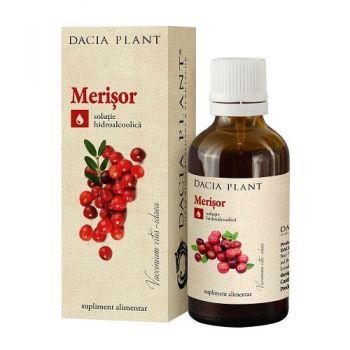Tinctura de Merisor, Dacia Plant, 50 ml