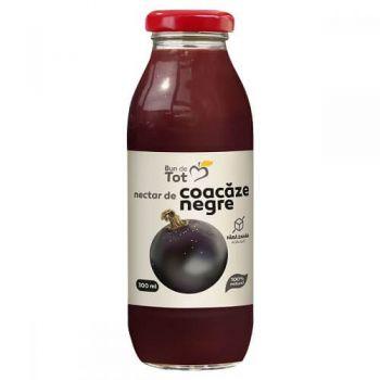 Nectar de coacaze negre, Dacia Plant Bun de Tot, 300 ml