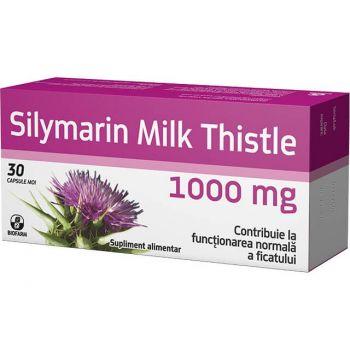 Silymarin Milk Thistle, 30 capsule (1000mg) Biofarm