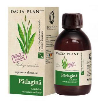 Sirop de patlagina, 200 ml, Dacia Plant