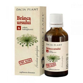 Tinctura Branca ursului fara alcool, 50 ml, Dacia Plant