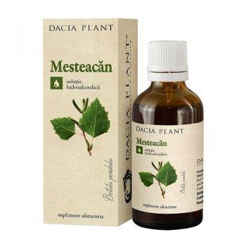 Tinctura de Mesteacan, 50 ml, Dacia Plant