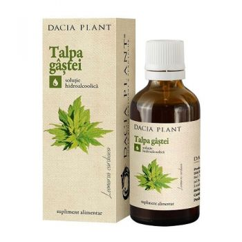Tinctura de Talpa Gastei, Dacia Plant, 50 ml