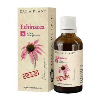 Tincutra de Echinacea fara alcool, 50 ml, Dacia Plant